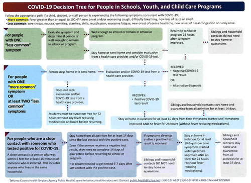 COVID-19 Decision Tree Chart